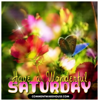 saturday-have-wonderful-day-butterfly