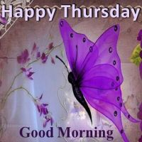 203445-Happy-Thursday-Good-Morning-Butterfly