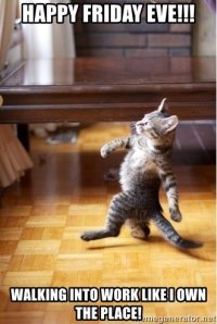 happy-friday-eve-walking-into-work-like-i-own-the-place