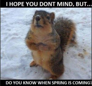 where-is-spring
