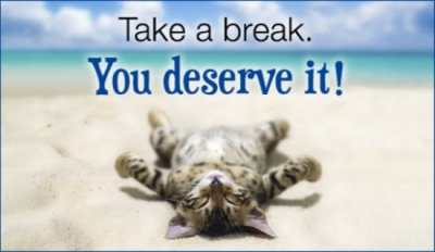 15344-take-a-break-cat