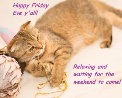 catfriday eve