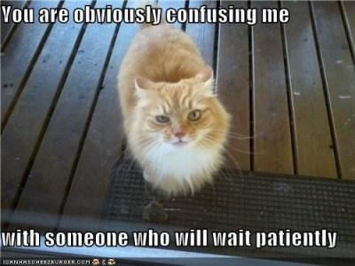 patient2