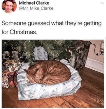 The purr-fect gift