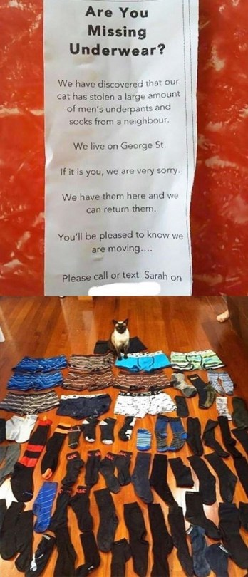 missing underwear