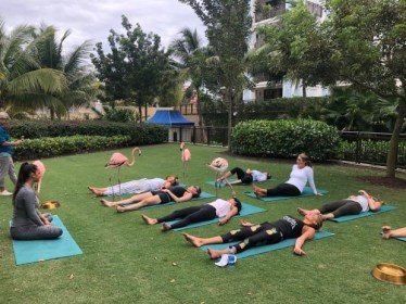 Pink Paradise Bahamas Resort Offers Yoga Lessons With Flamingos