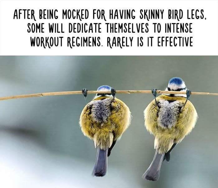skinny bird legs