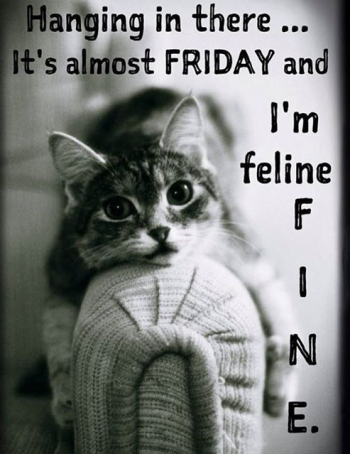 169859-Hang-In-There-Its-Almost-Friday